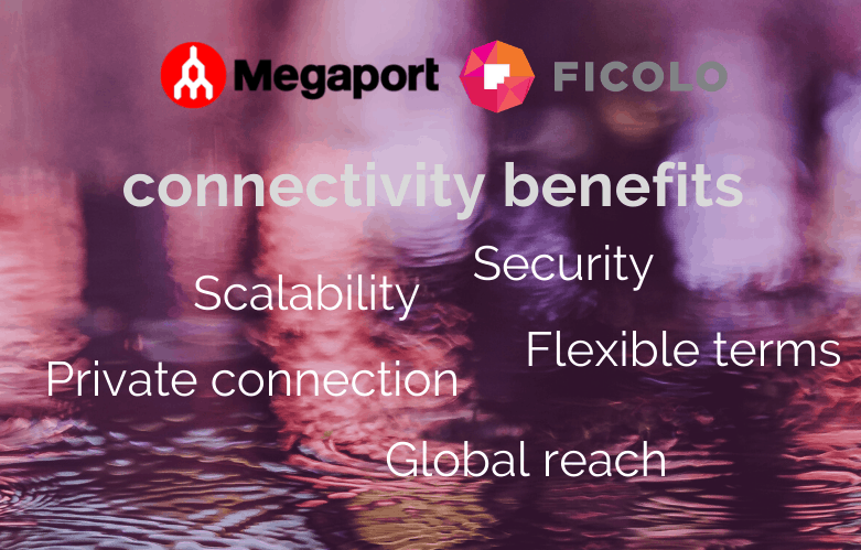 Megaport connectivity benefits. Security, scalability, flexible terms, private connection, global reach.